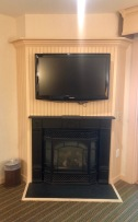 TV and gas fireplace in the suite